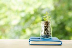 plante-provenant-pieces-monnaie-dans-bocal-verre-nature-floue_1150-17709